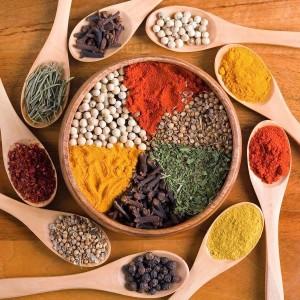 condimente indiene